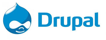 Read this before you hire the Drupal professionals